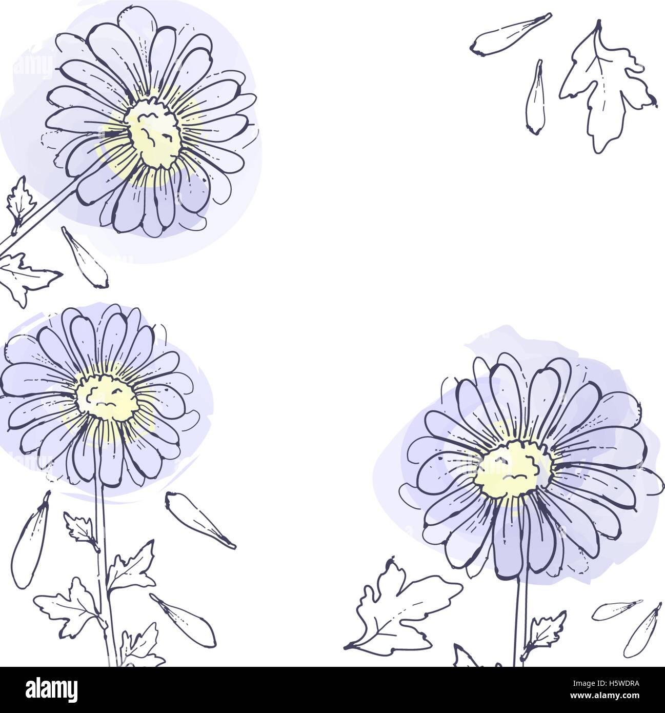 Daisy Flowers Floral Vector Set Of Ink Drawing Plants Monochrome