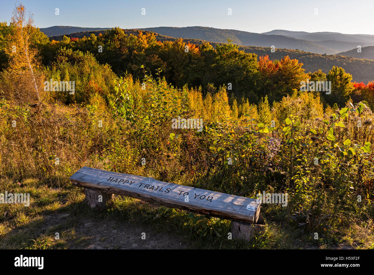 Bench at the end of the Shaverton Trail overlooking the Pepacton Reservoir in Andes in the Catskills Mountains of - Stock Image