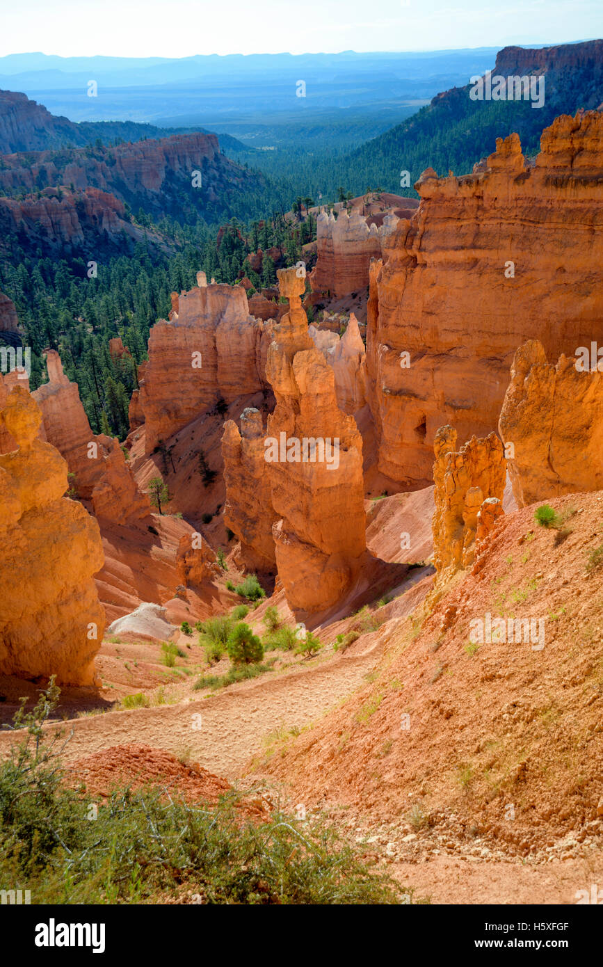 Sunrise and scenic views of the Amphitheater, Bryce Canyon National Park, located Utah, in the Southwestern United - Stock Image