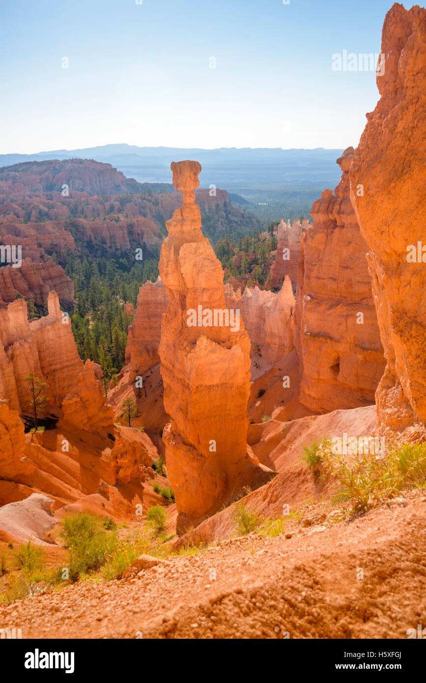 Thors Hammer, Bryce Canyon National Park, located Utah, in the Southwestern United States. - Stock Image