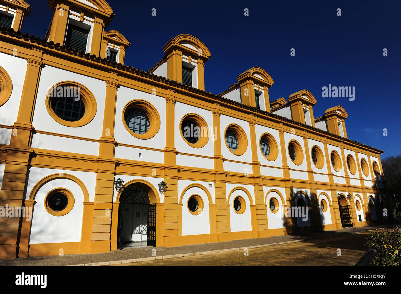 The So Called Picadero Indoor Arena Within The Fundacion Real Stock Photo Alamy