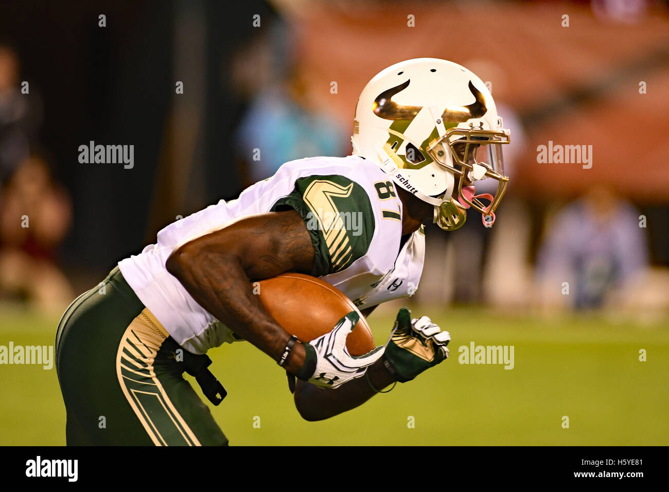 Philadelphia, Pennsylvania, USA. 21st Oct, 2016. USF's slot receiver, RODNEY ADAMS in action during the game - Stock Image