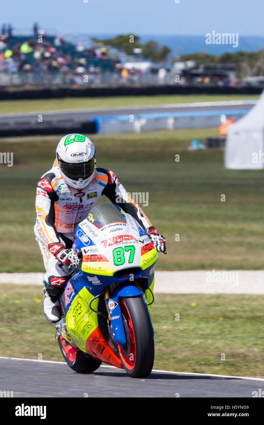 Melbourne, Australia. 23rd October, 2016. MotoGP warm-up during during the 2016 Michelin Australian Motorcycle Grand - Stock Image