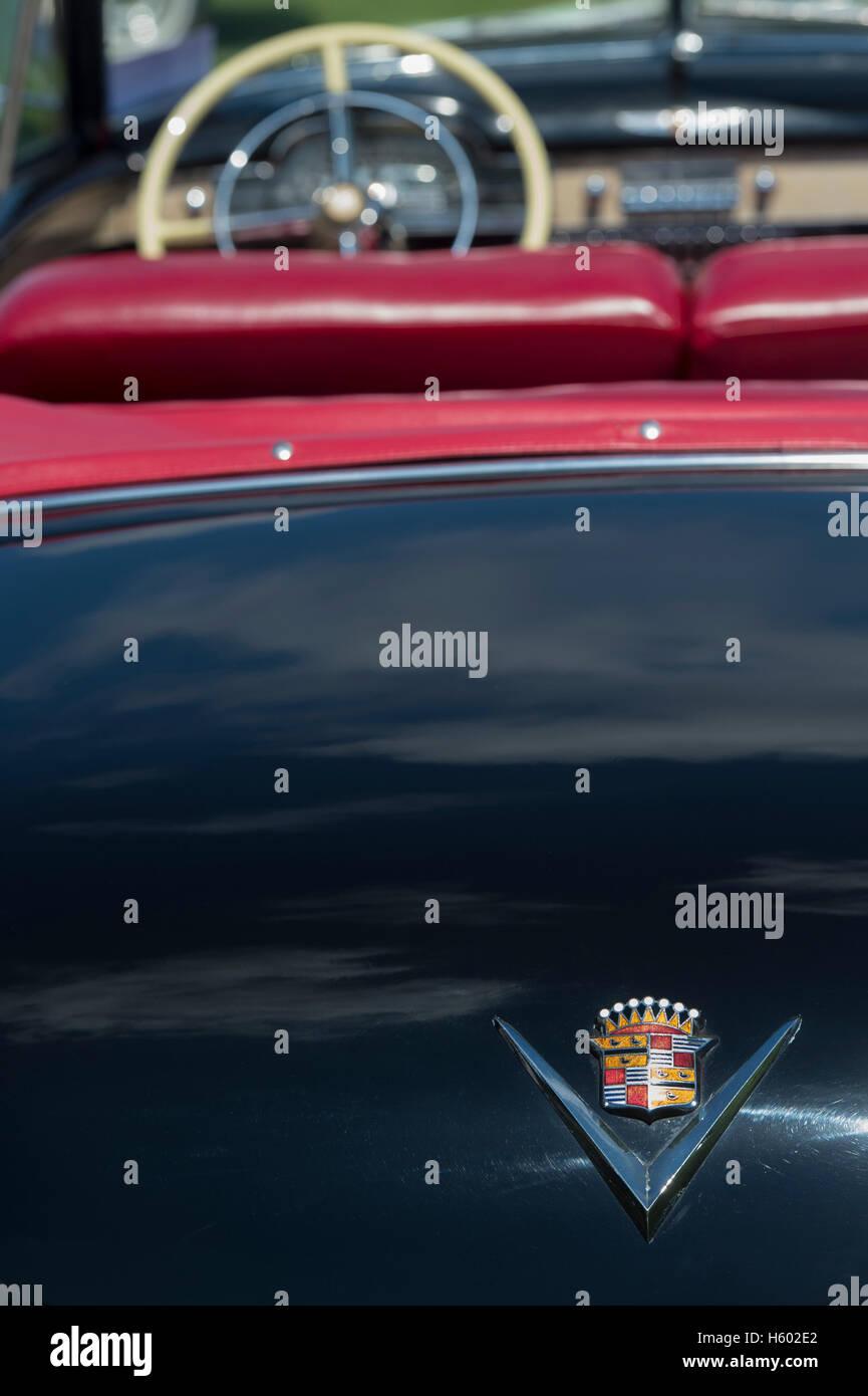 1949 Convertible Cadillac rear abstract - Stock Image