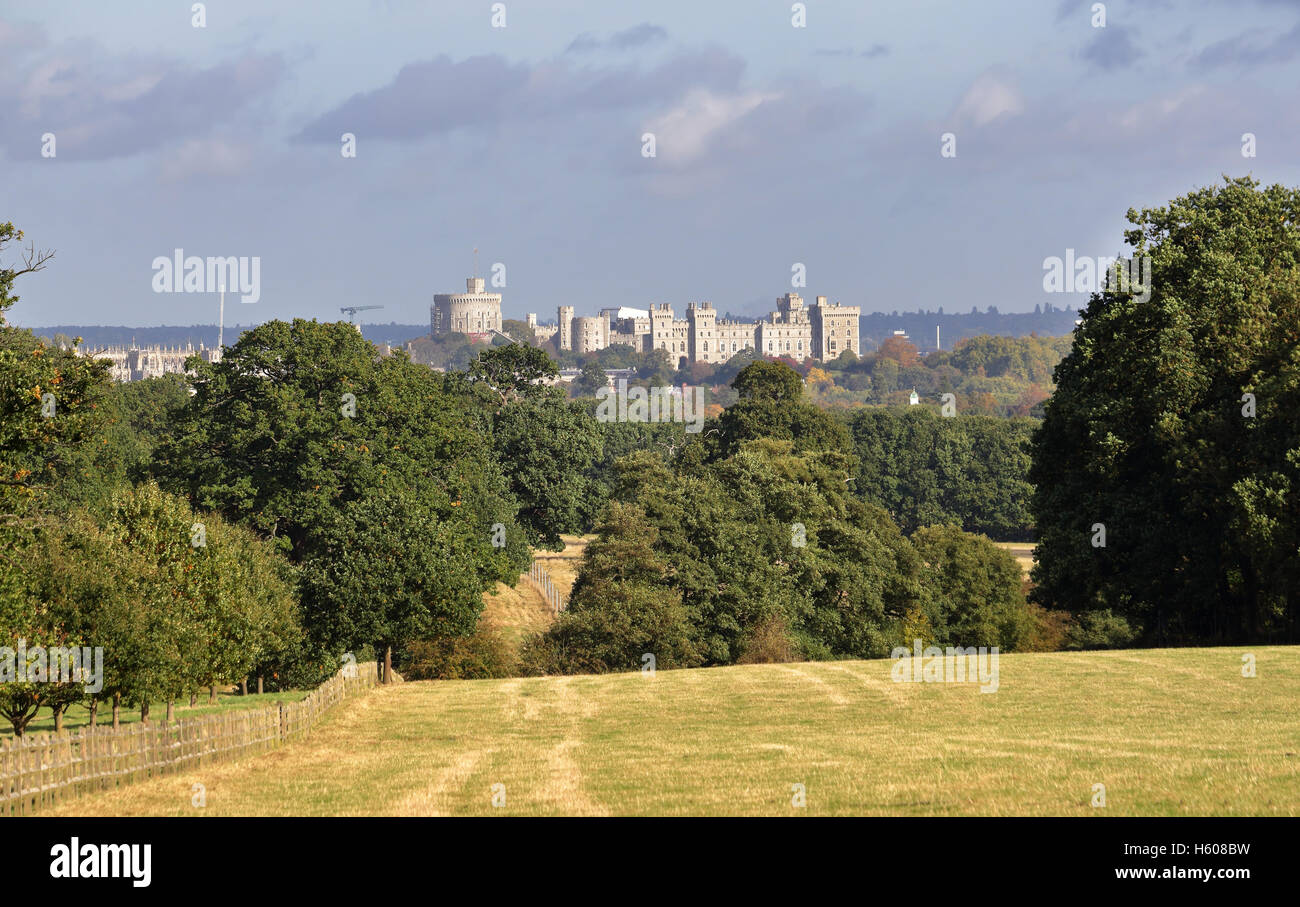 Autumn in the Deer Park Windsor with Castle in the background - Stock Image