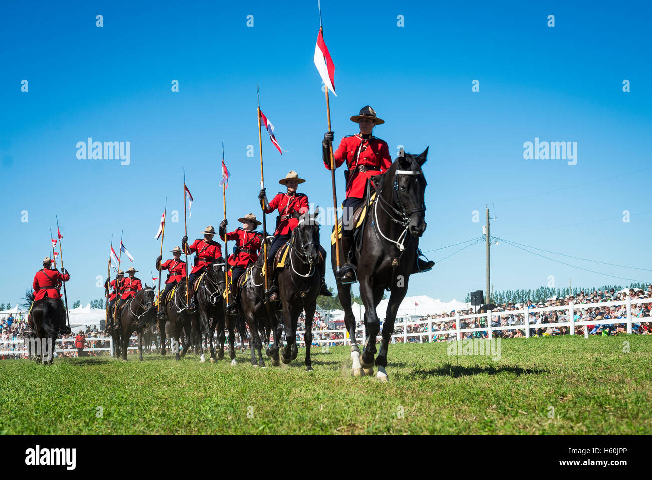 Group of RCMP mounties during a musical ride ceremony - Stock Image