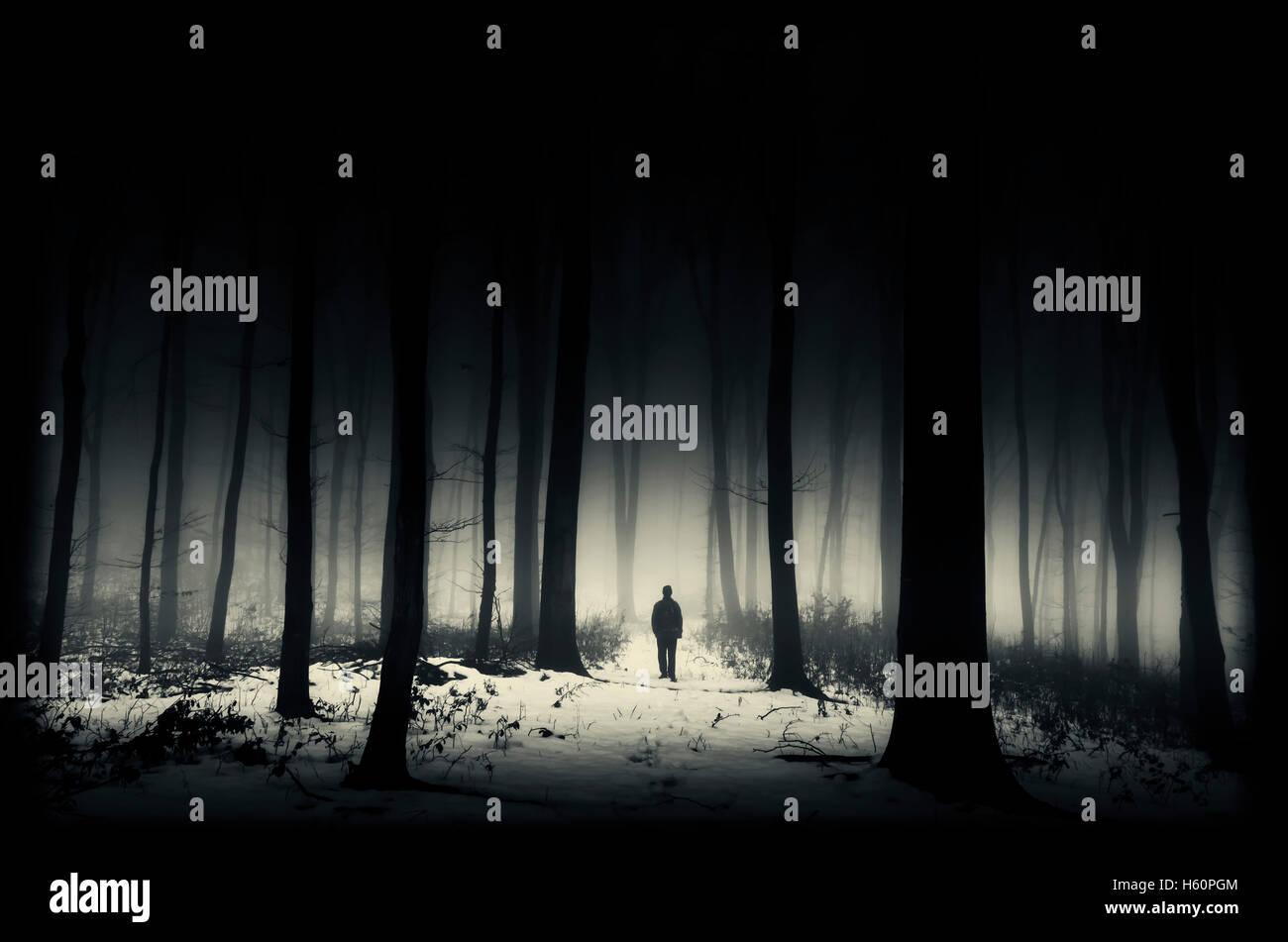 dark winter forest - Stock Image