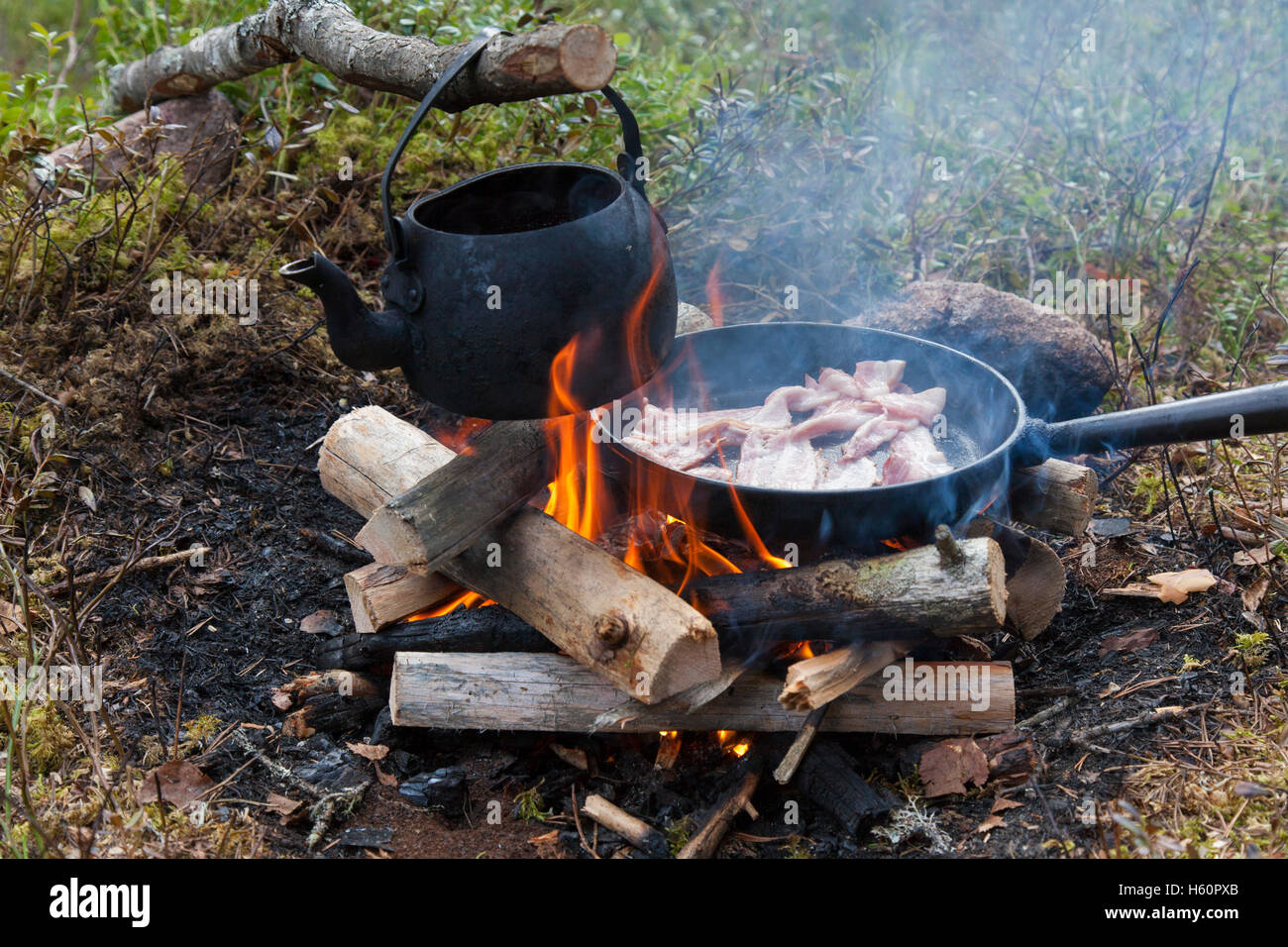 Blackened tin kettle boiling water and pan cooking bacon over flames from campfire during hike in forest - Stock Image