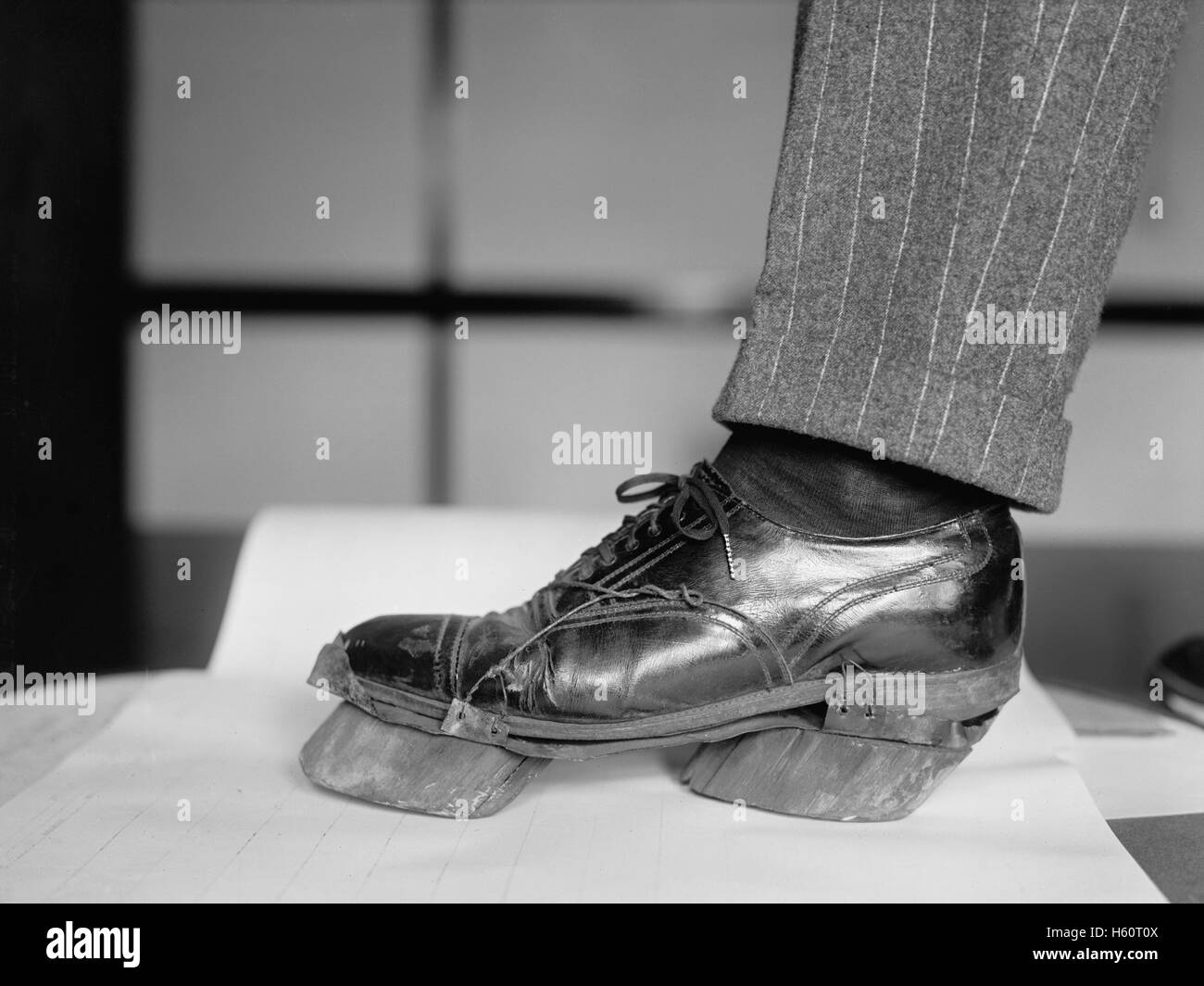 Policeman Trying on Cow Shoe used by Moonshiners during Prohibition, Washington DC, USA, National Photo Company, - Stock Image