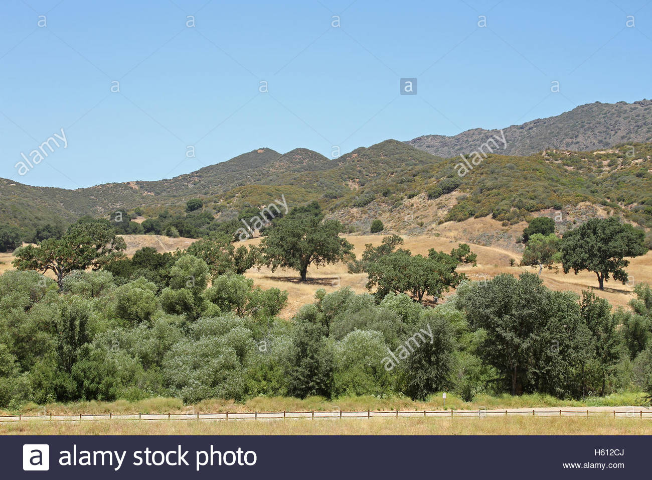 Paramount Ranch, Santa Monica Mountains National Recreation Area, Los Angeles, California, oak trees, suburban wilderness - Stock Image