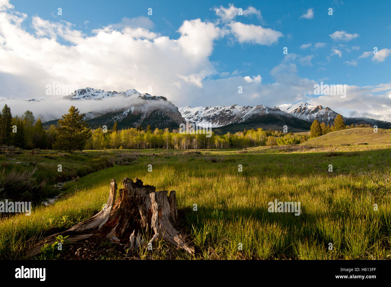 Boulder Mountains in the Sawtooth National Recreation Area, Idaho - Stock Image