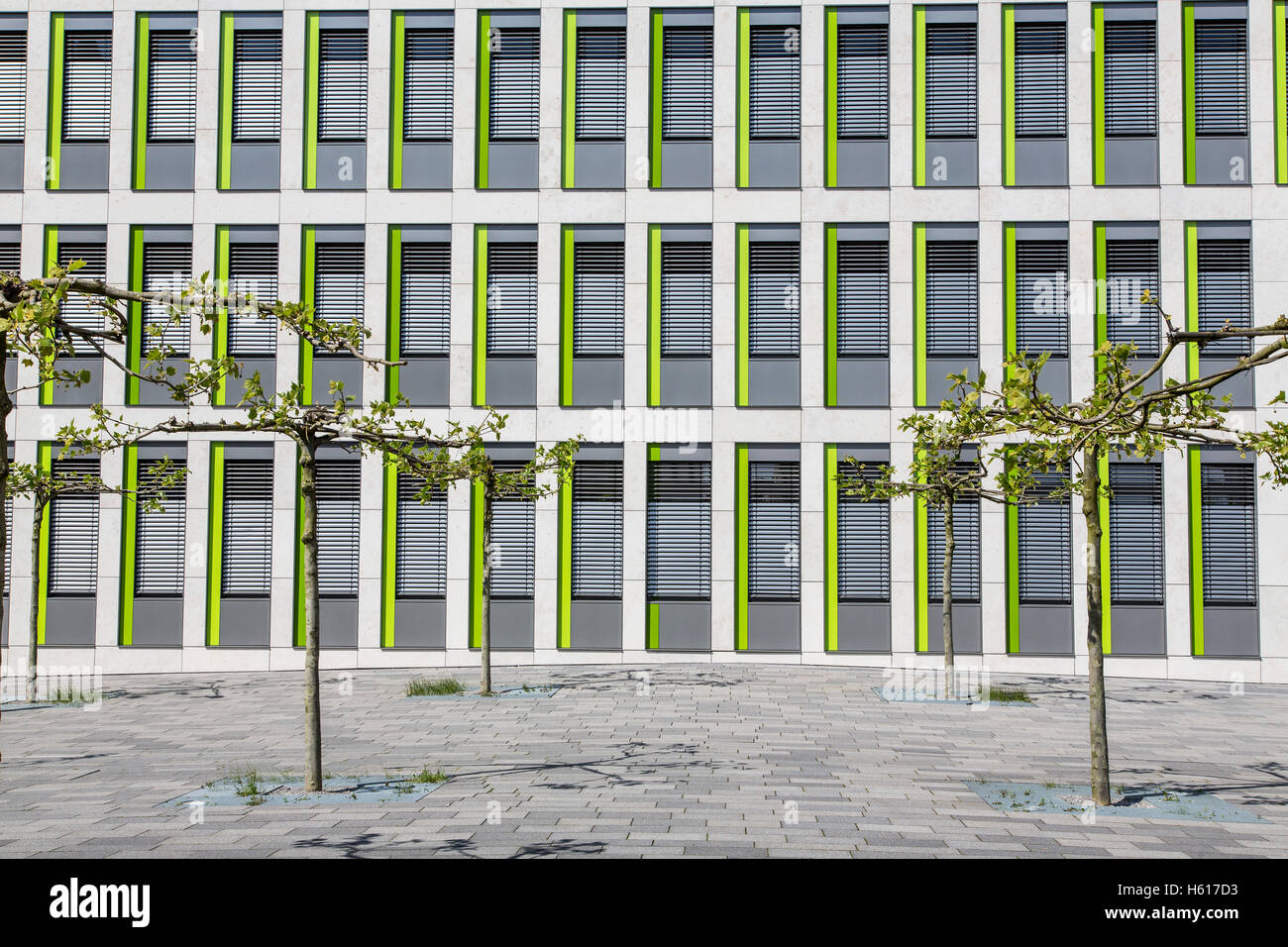 facade of a modern office building, small windows, small trees in front, - Stock Image