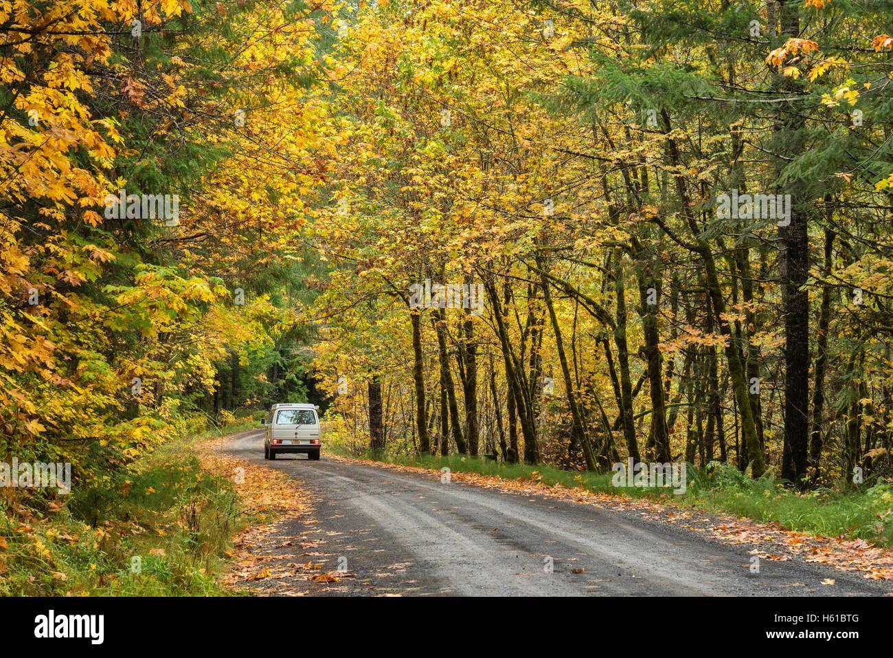 VW Westfalia on Forest Road 27, Umpqua National Forest, Oregon. - Stock Image