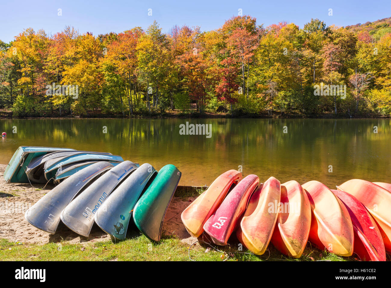 Kayaks, canoes and row boats lined up on the shore of Little Pond state campground in the Catskills Mountains of Stock Photo
