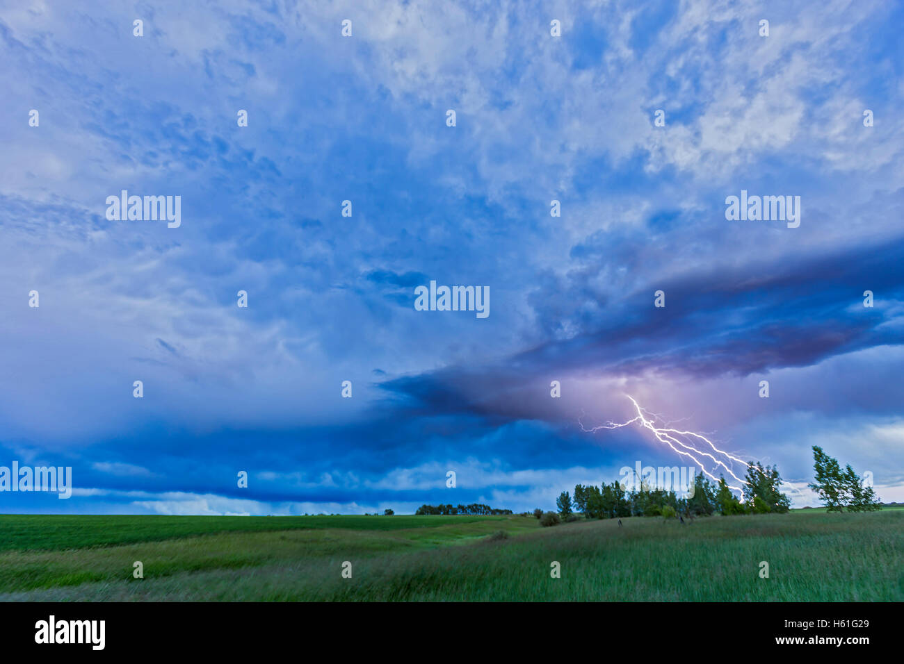 A lightning bolt comes out of a retreating thunderstorm, in the darkening twilight.   This was one frame of a 650 Stock Photo