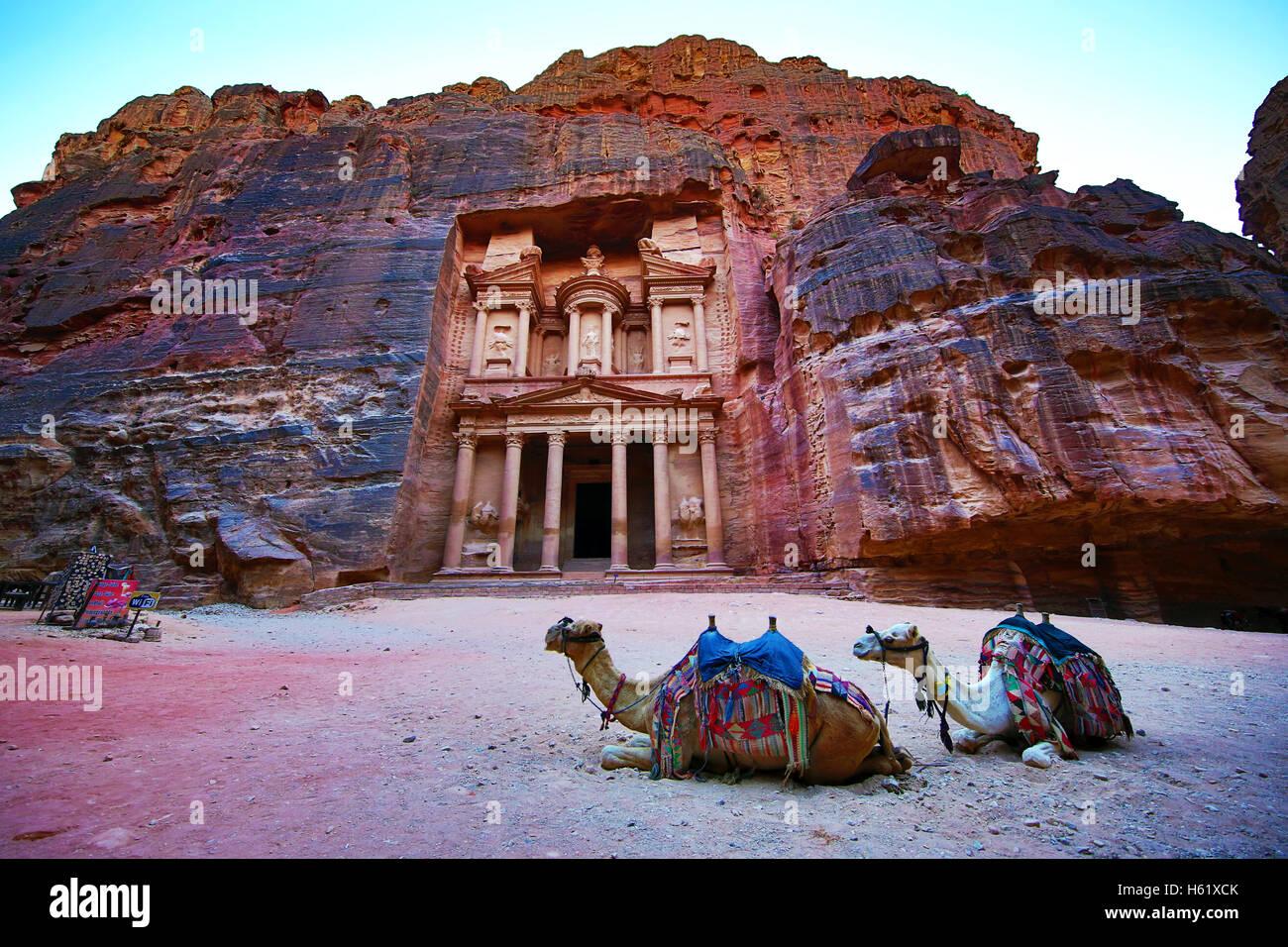 View of the Treasury, Al-Khazneh, with camels, Petra, Jordan - Stock Image