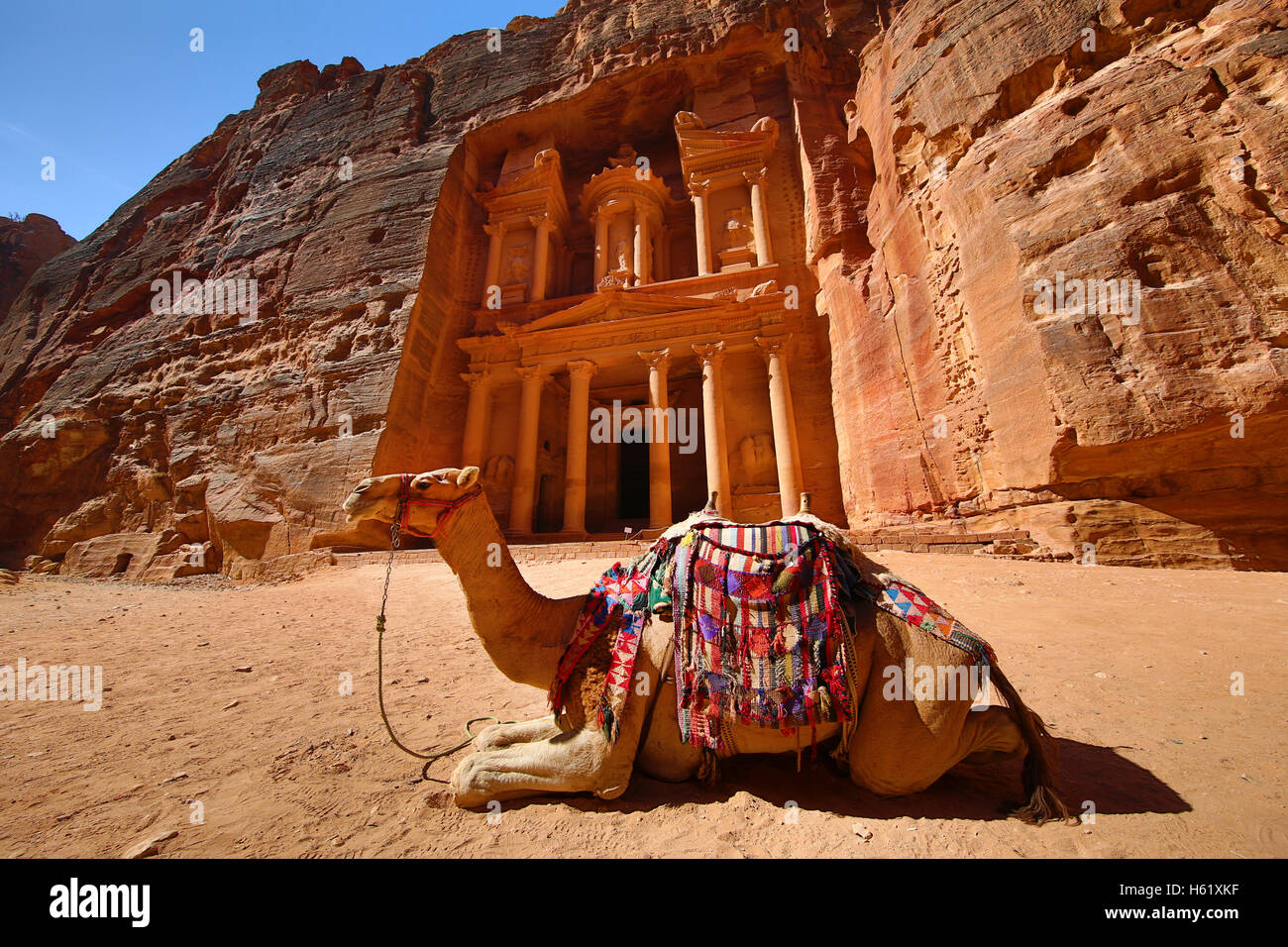 View of the Treasury, Al-Khazneh with camels, Petra, Jordan - Stock Image