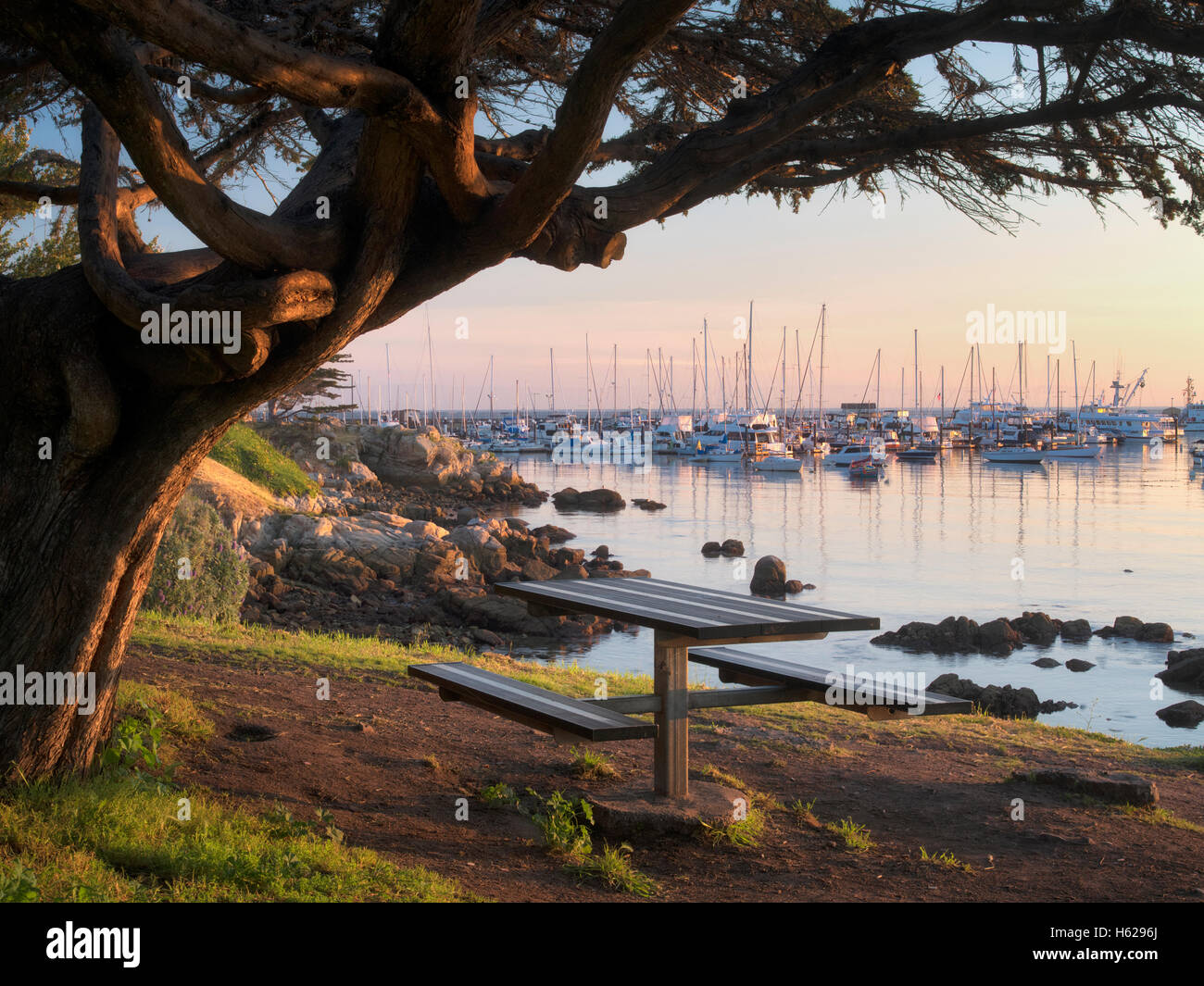 Monterey Harbor and Marina, and table with sunrise. Monterey, California - Stock Image