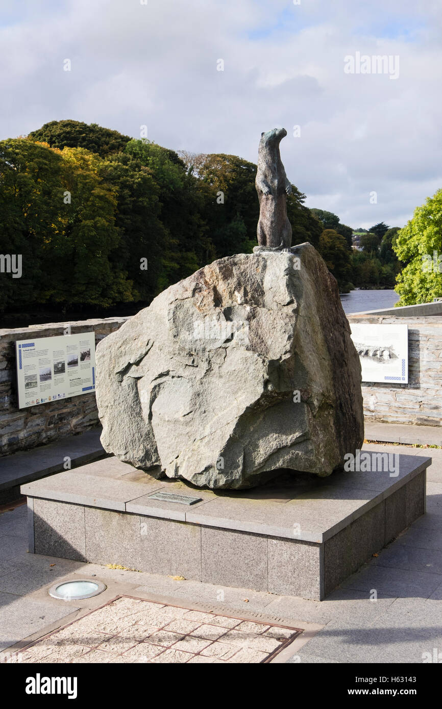 The Teifi Otter sculpture beside Afon Teifi River was presented to town by David Bellamy. Cardigan Ceredigion Wales - Stock Image