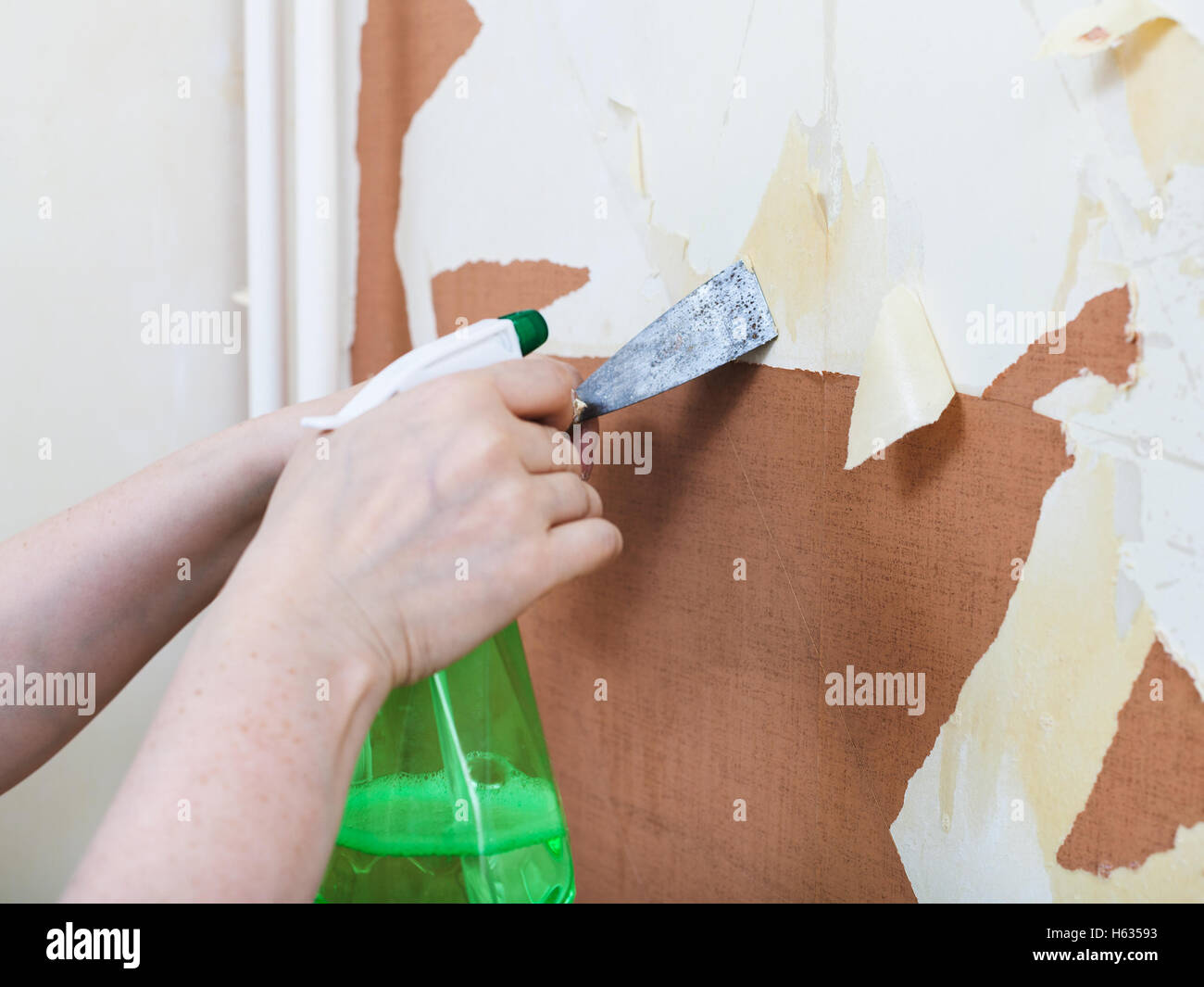 Renovation Of Apartment Wallpapering Preparation Walls Removing Old Wallpaper From Wall With Chemical Liquid Stripper