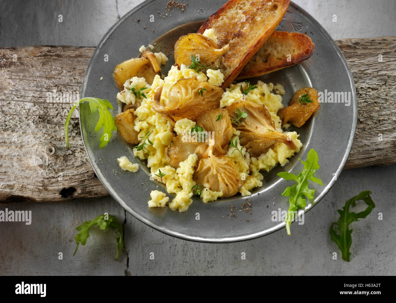 Yellow Oyster mushrooms sauteed in butter and served with scambled egg , sour dough  fried bread and wild rocket - Stock Image
