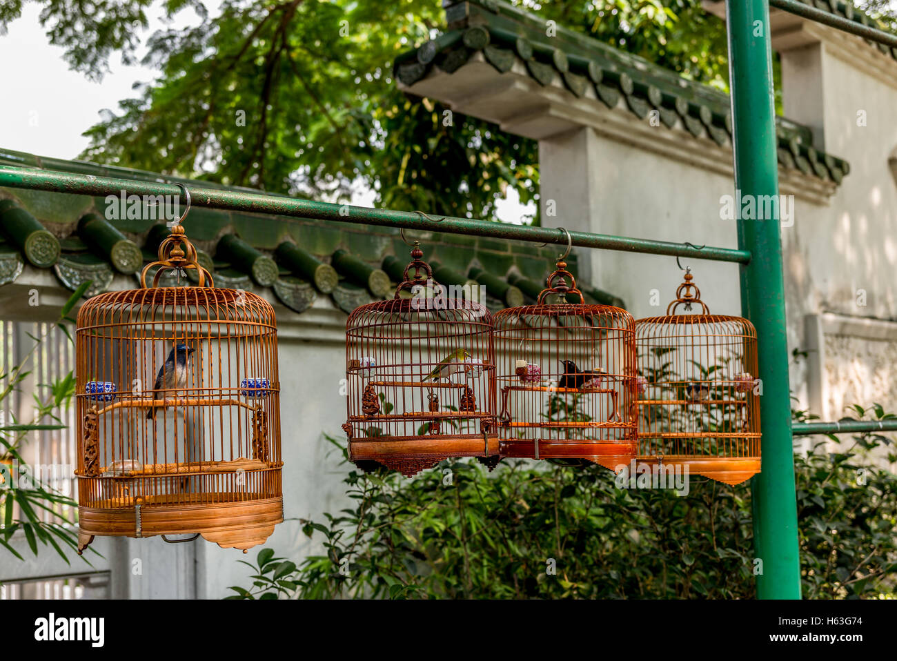 Birds in cages hanging at the Bird Garden and market in Yuen Po ...