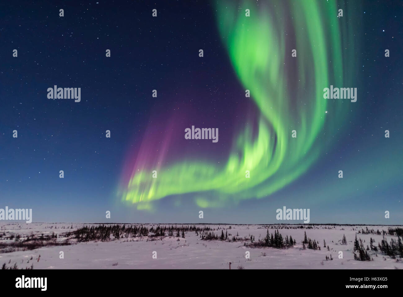 A superb display of aurora borealis seen on March 14, 2016 when it reached Level 5 storm levels. Here it begins - Stock Image