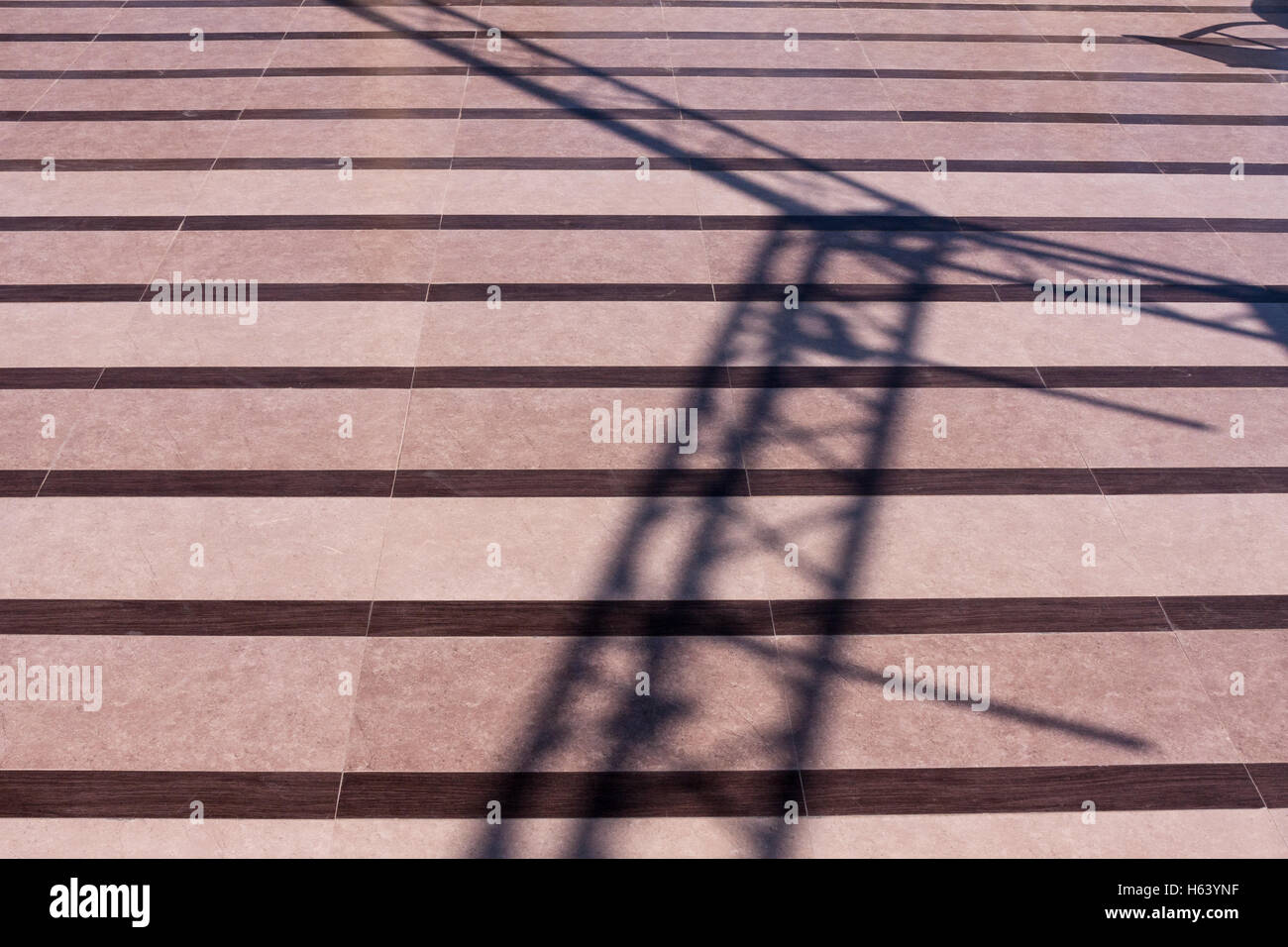 shadow pattern of scaffold - Stock Image
