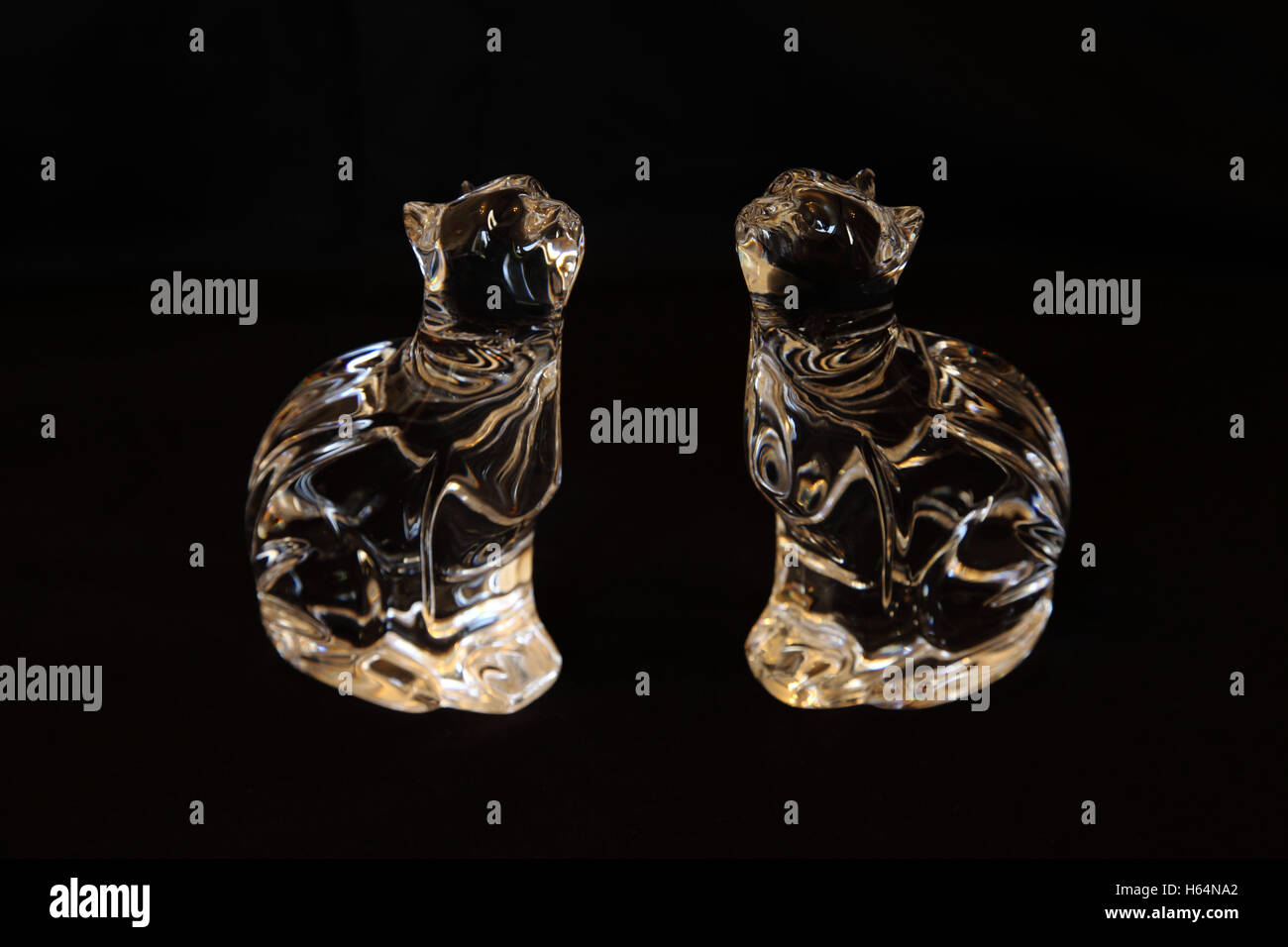 Two Waterford Crystal glass figurines of cats against a black background. Glass ornaments - Stock Image