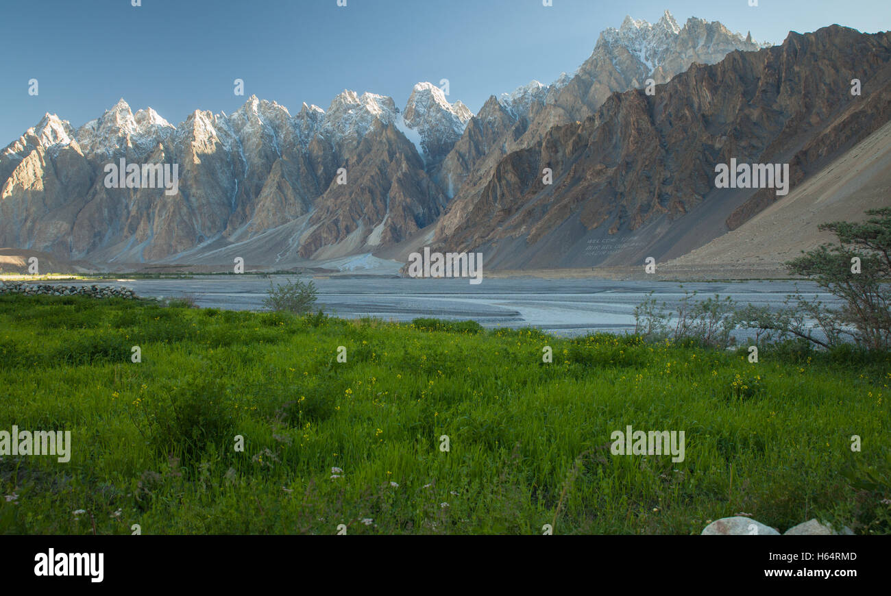 green grass by Hunza river with peaks of Tupopdan for background in Karakoram mountains, Passu, Northern Pakistan - Stock Image
