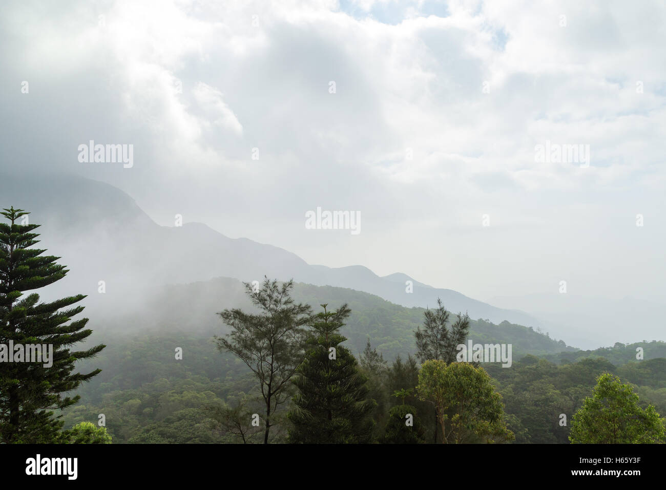 Cloudy view of lush forest and mountain on the Lantau Island in Hong Kong, China. Copy space. - Stock Image