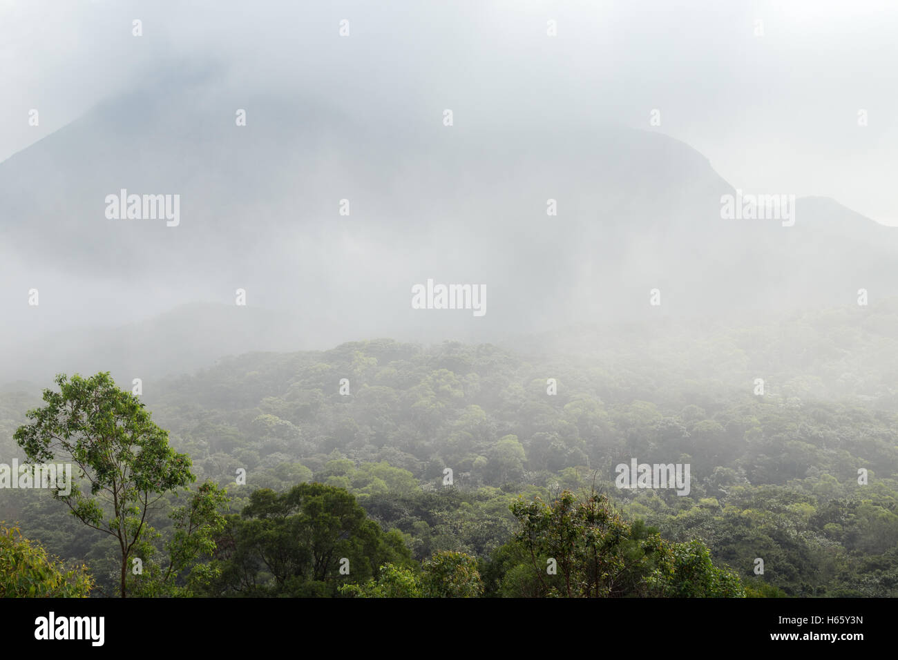 Cloudy view of lush forest and mountain on the Lantau Island in Hong Kong, China. - Stock Image