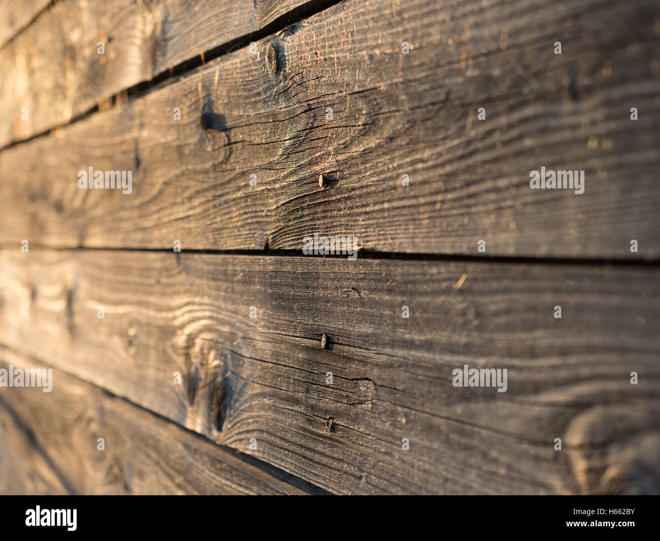 Old weathered wooden planks, shallow depth of field - Stock Image