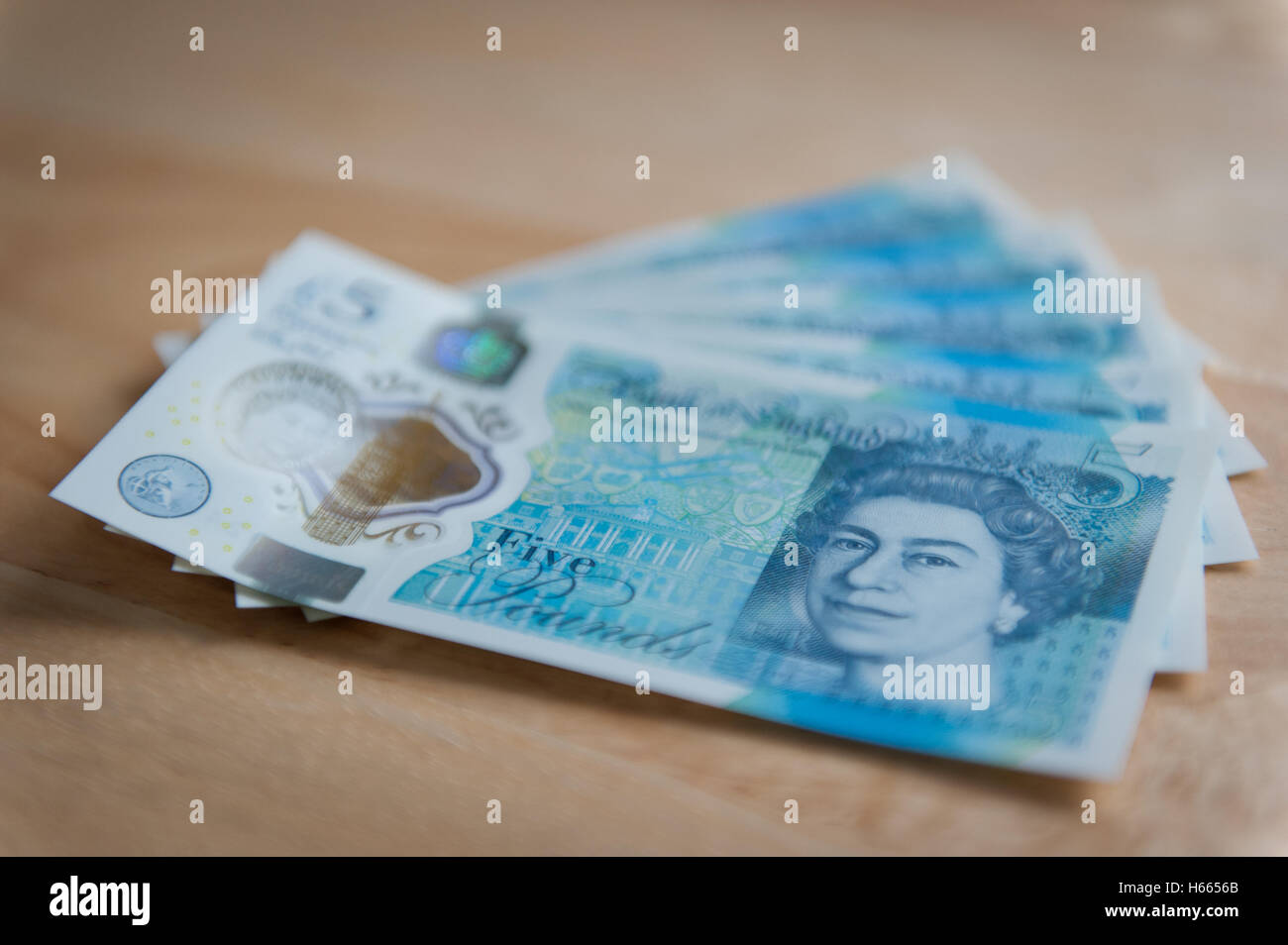 New five pound notes - Stock Image