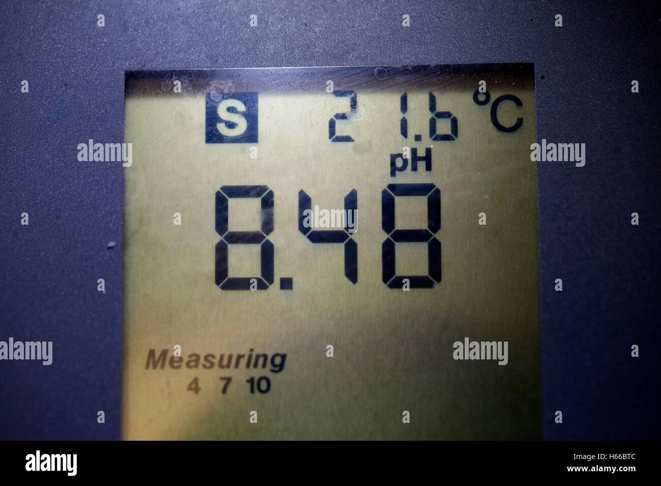 pH meter LCD panel showing a pH of 8.48. - Stock Image