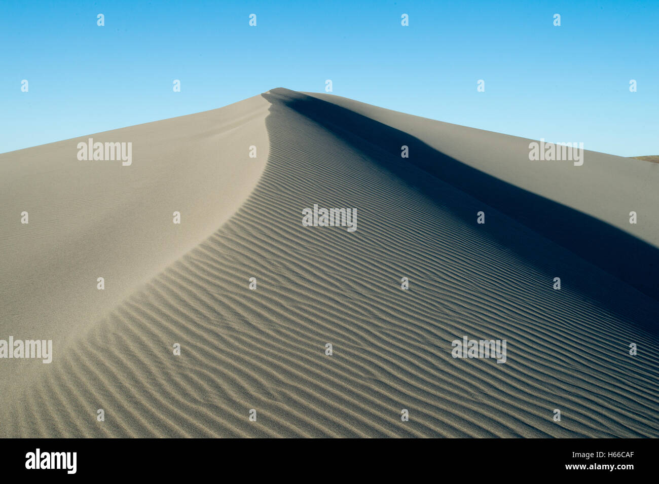 Sand dune in Bruneau Dunes State Park in Owyhee County Idaho - Stock Image