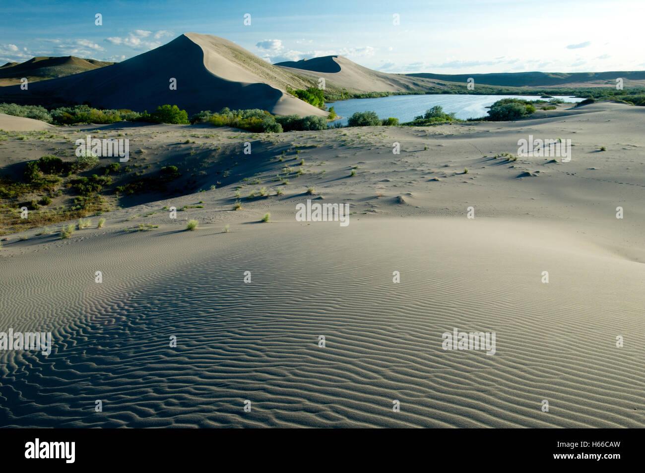 Bruneau Dunes State Park Idaho, USA - Stock Image