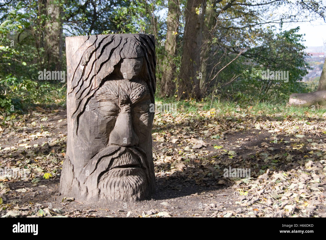 Wooden tree stump carved with the face of the green man, Meersbrook Park, Sheffield, UK - Stock Image
