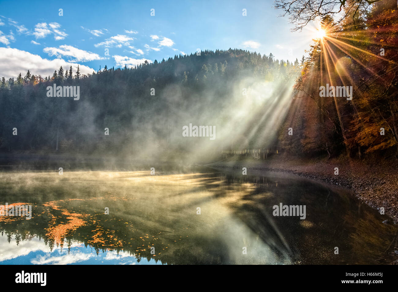 view on crystal clear lake with rocky shore and smoke on the water near the pine forest in fog at the foot of the - Stock Image