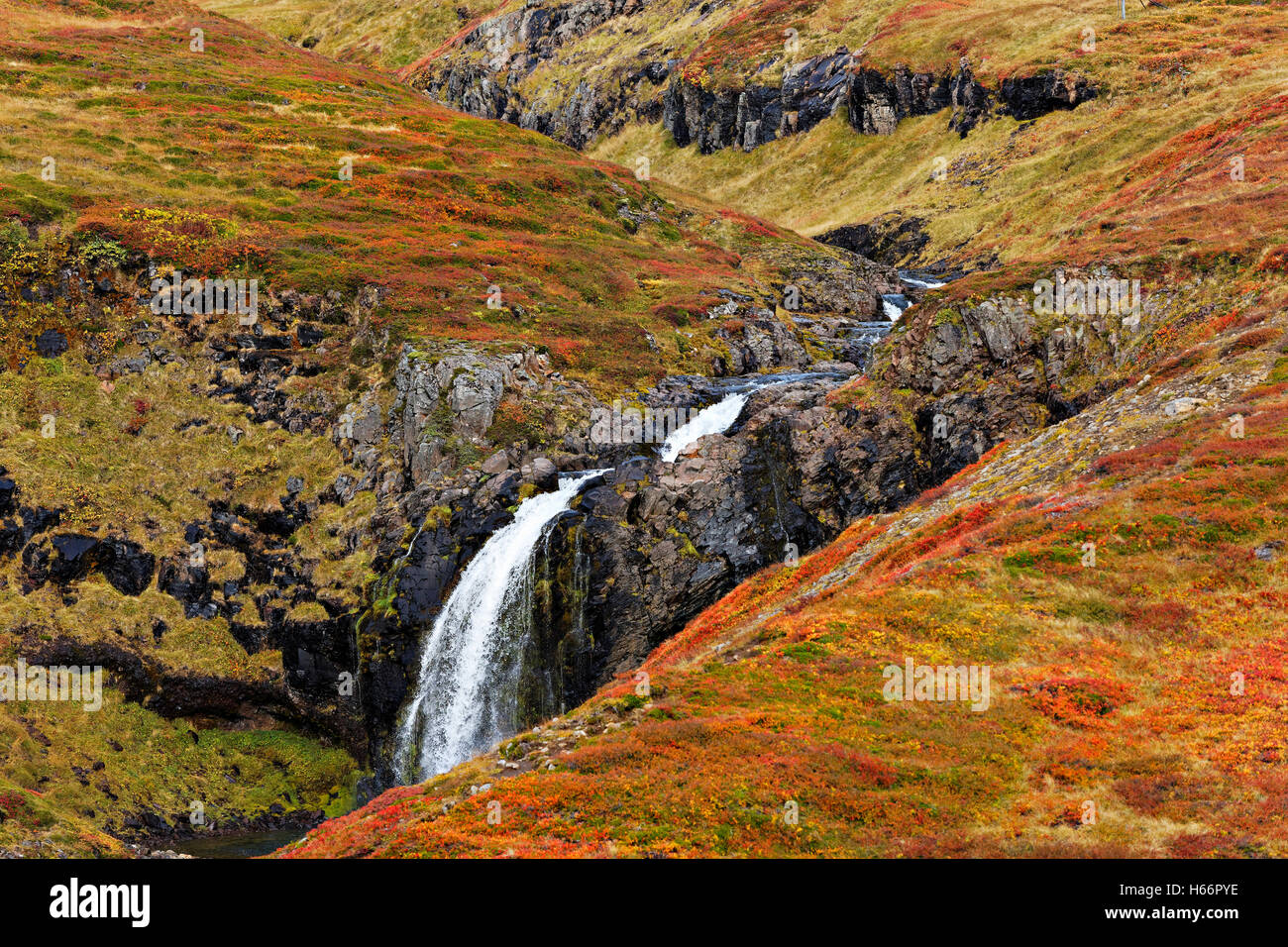 Small waterfall in golden autumn landscape, West Iceland, North Atlantic, Europe - Stock Image