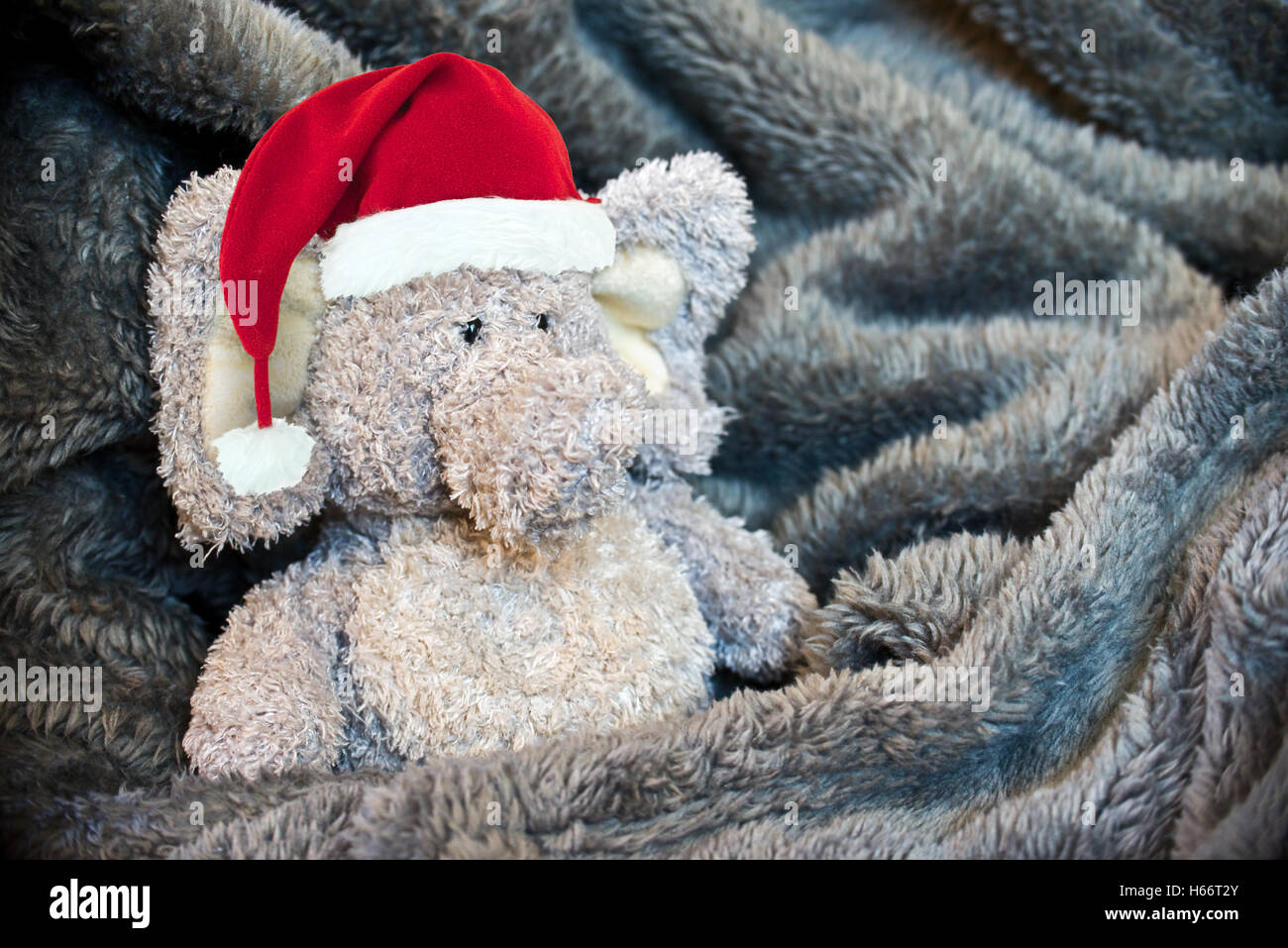 Stuffed fluffy animal with a Santa hat in a soft blanket - Stock Image