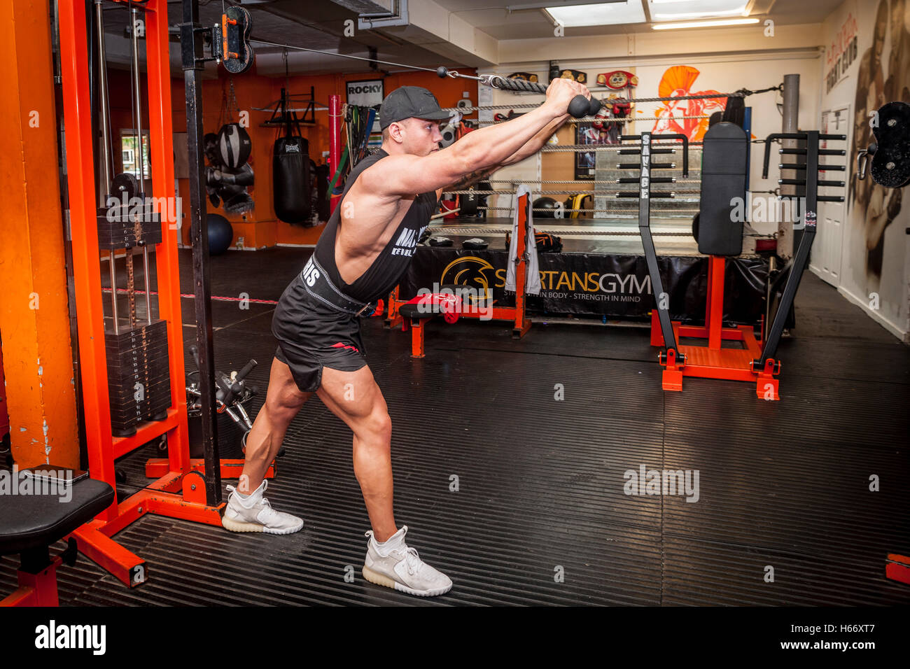 bodybuilder exercising in the gym - Stock Image