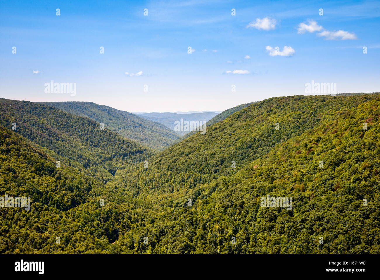 Blackwater Falls State Park - Stock Image