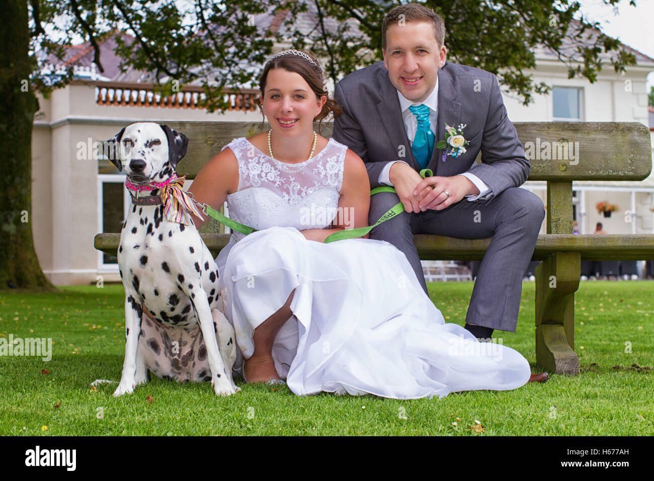 Bride and groom and their dog at their wedding. Dalmatian with his newly wed owners. - Stock Image