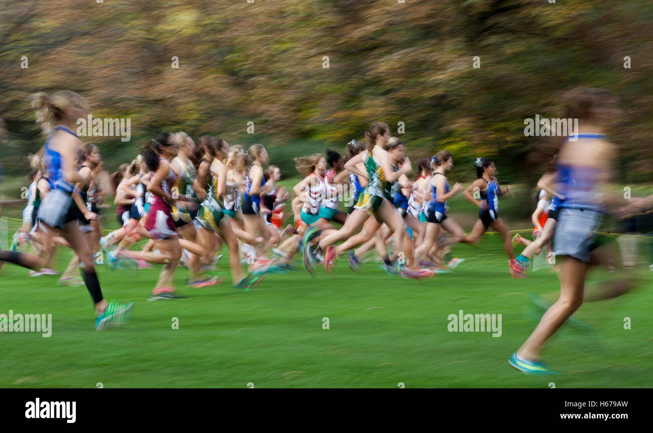 Runners In A Wisconsin High School Girls Cross Country Sectional