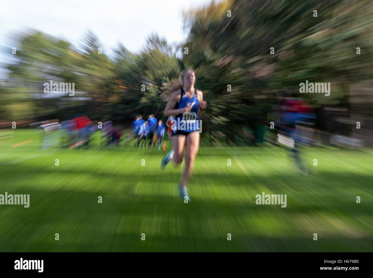 Runners in a Wisconsin High School girls' Cross Country sectional meet. - Stock Image