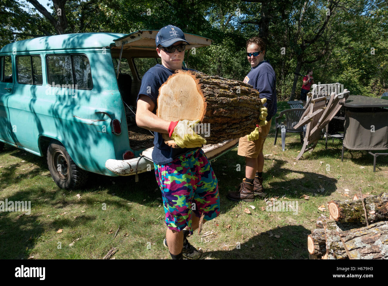 Teenager unloads very large firewood log from 1956 Chevy Suburban Carryall while father watches. Clitherall Minnesota - Stock Image