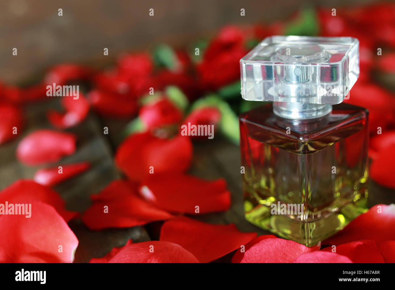 perfume bottle and petals - Stock Image