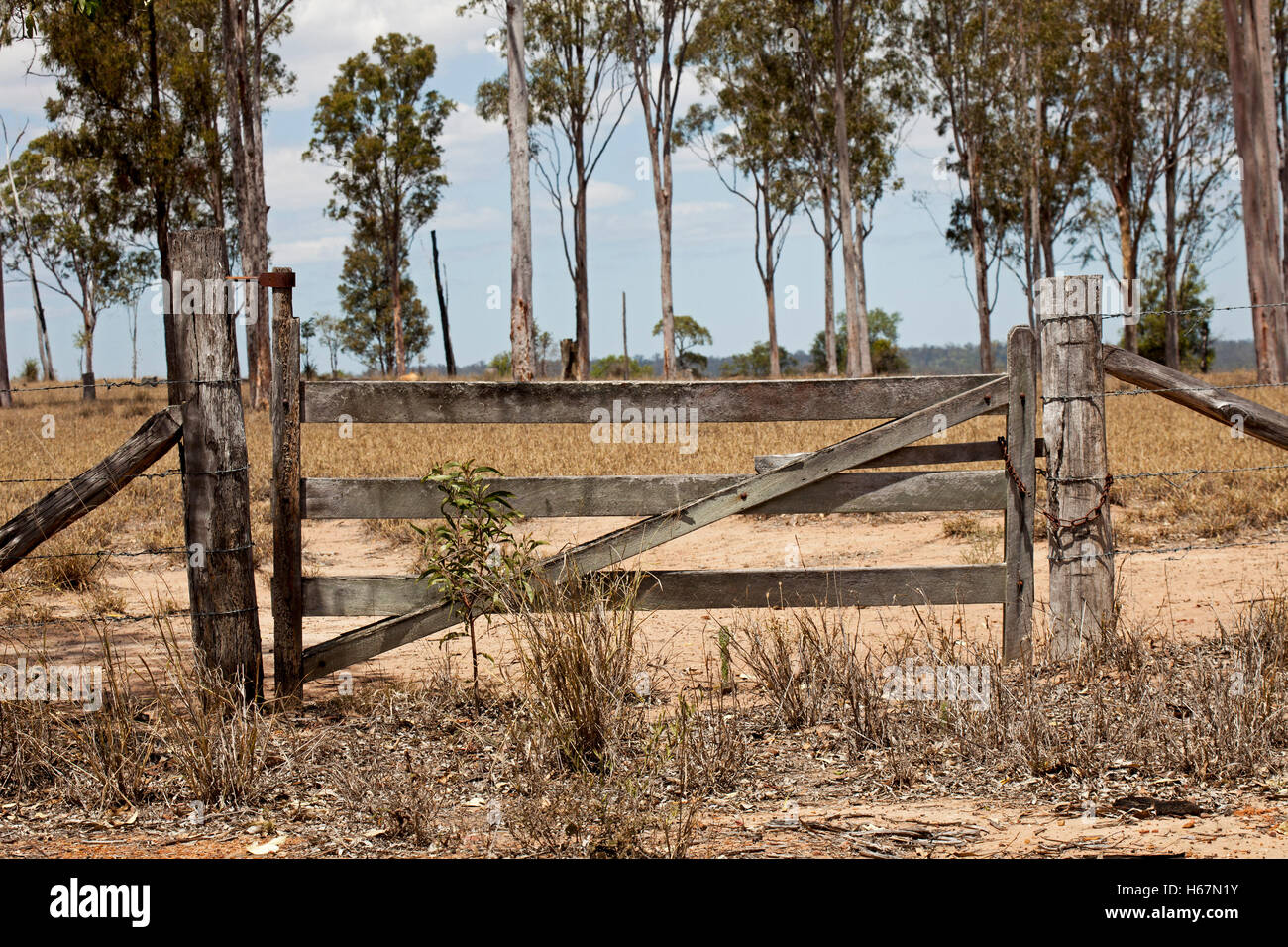 Old Wooden Farm Gate And Timber Posts With Field Of Dry