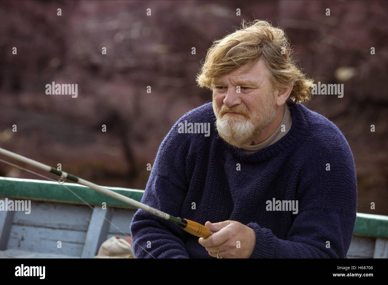 BRENDAN GLEESON THE GRAND SEDUCTION (2013) - Stock Image